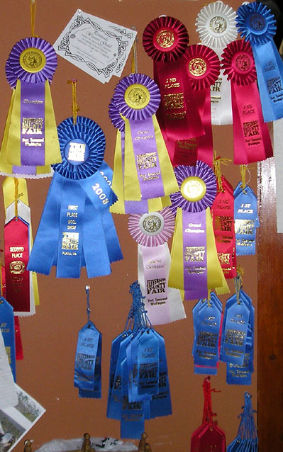 Ribbons for Fleece, Yarn and Knit items
