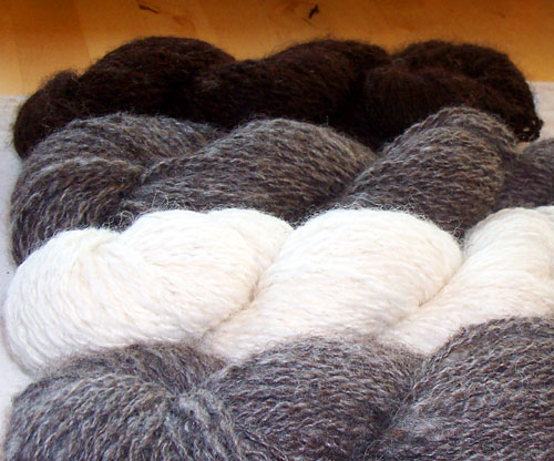 Handspun Yarn from Jacob Sheep in naturally occurring colors